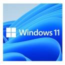 Microsoft Windows 11 Professional 64-bit, OEM DVD, Single Copy