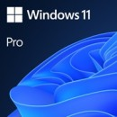 Microsoft Windows 11 Professional 64bit English OEI DVD Operating Software OEM