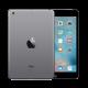 iPad Mini 1st Gen (A1432 / A1454)